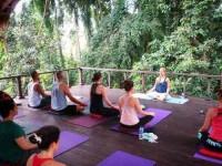 11 дней Виньяса Йога Retreat на Бали