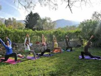 8 Days Spring Detox and Yoga Retreat Spain