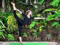 7 Days Tailor-Made Yoga Retreat in Kerala, India