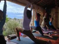 10 дней Аюрведа Обучение учителей йоги в Мексике