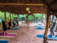 7 Days Yoga Retreat in Varkala