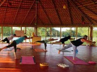 15 Days Beginners Yoga Retreat India