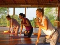 29 Days Advanced 300-Hour Yoga Teacher Training India