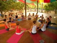 25 Days 200-Hour Ashtanga Vinyasa Yoga Teacher Training India