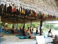 10 Days Healthy Living Yoga Retreat in Thailand