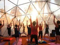 7 Days Ashtanga & Prana Vashya Vinyasa Yoga Retreat in Goa