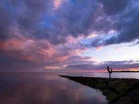 5 Days Rejuvenating Yoga Holiday in Kerala, India