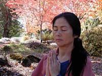 11 дней Ананда Медитация Преподаватель Обучение в США